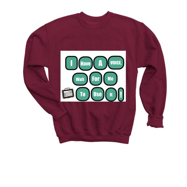 youth I have a voice sweater - front
