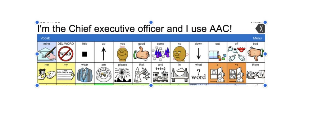 Yes, I'm The Chief Executive Officer, and I Use AAC!
